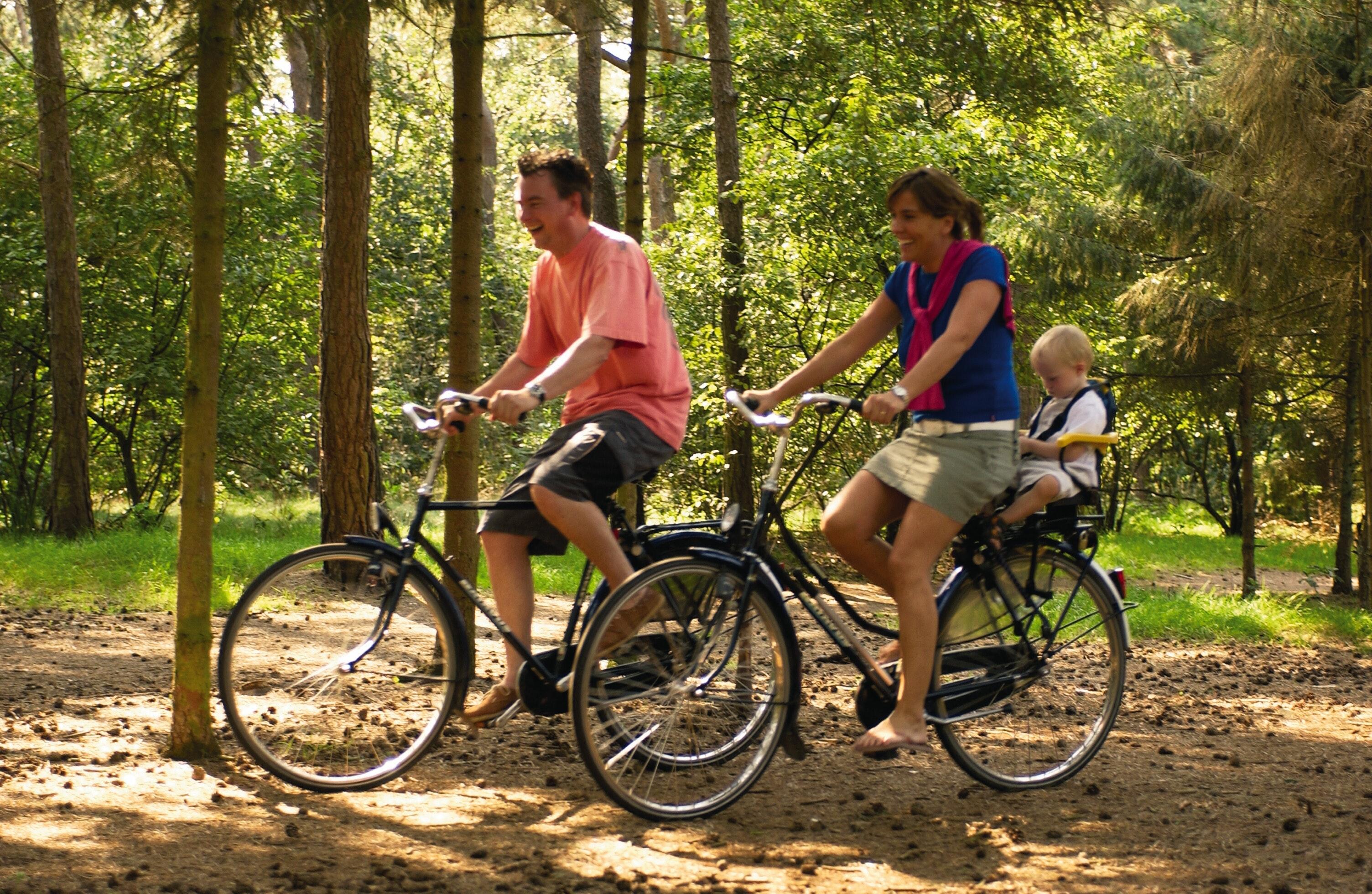 fietsen vakantiepark de katjeskelder