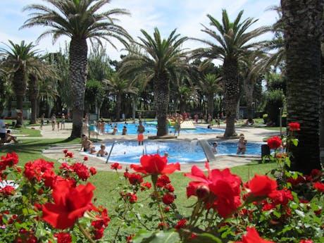 zwembad met palmbomen camping Valldaro