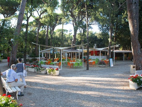 Terras camping International Etruria