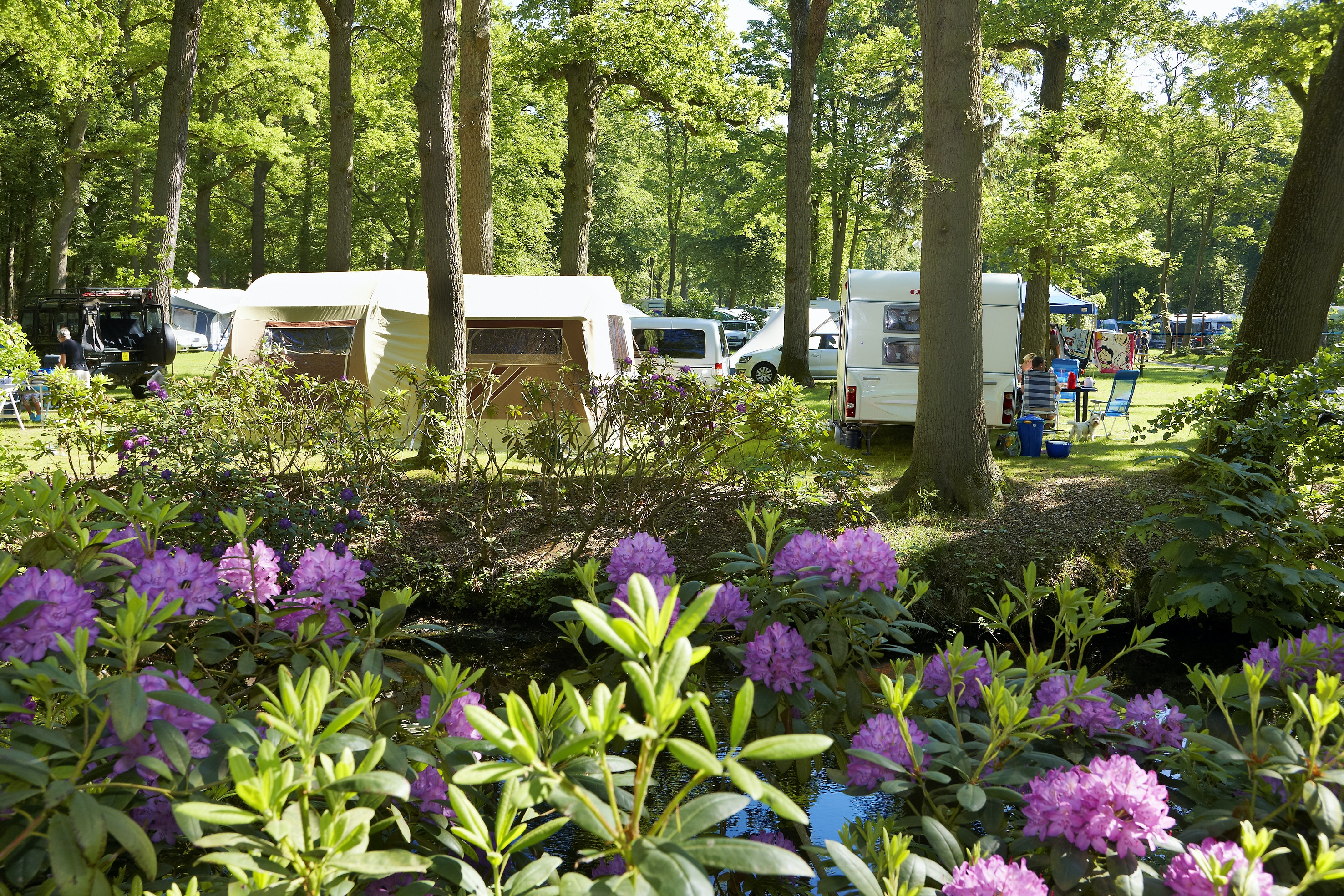 camping Duinrell
