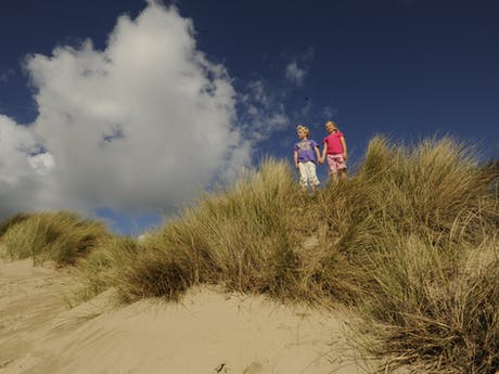 strand en duin westende