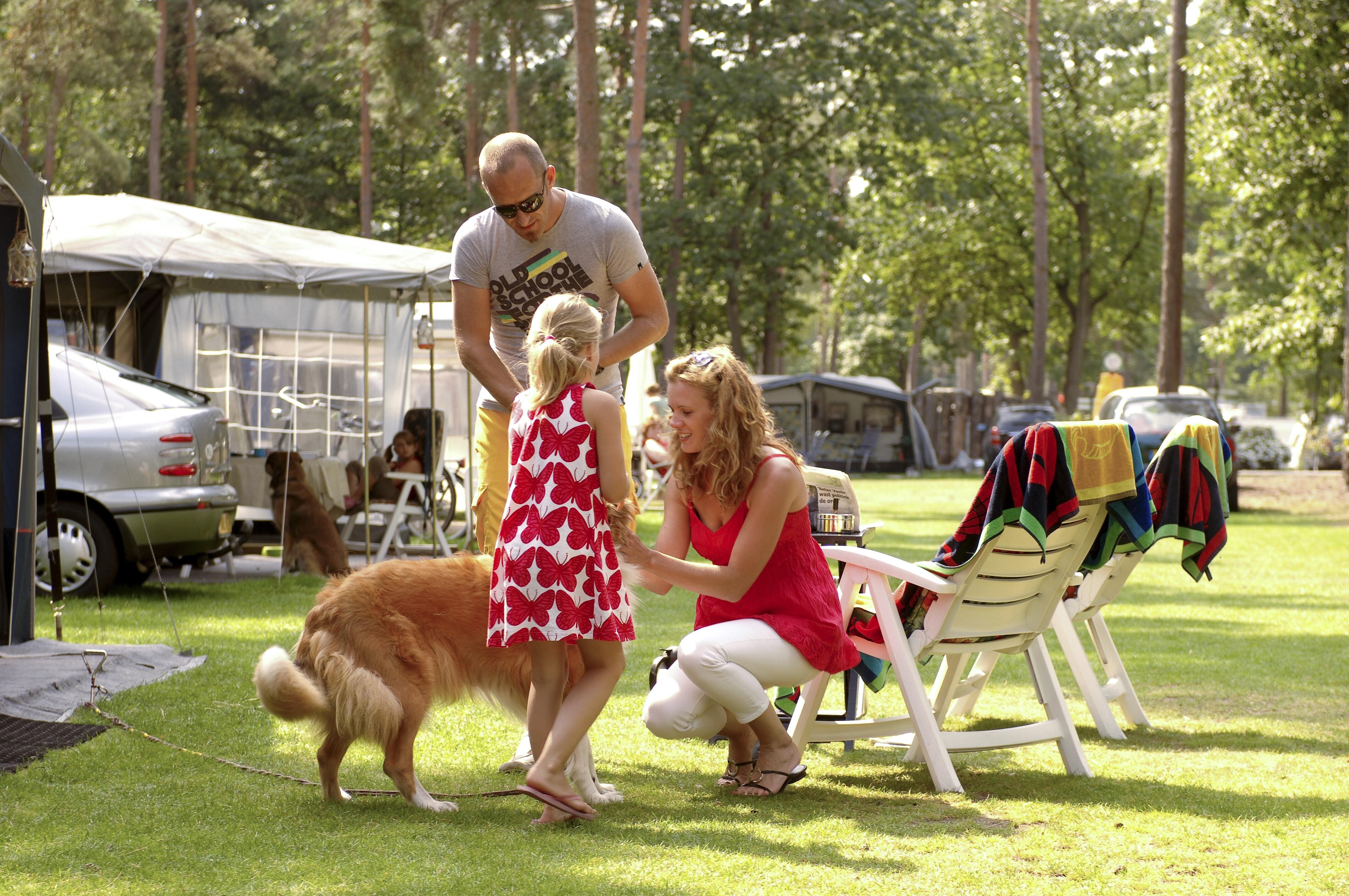 Familie Bospark 't Wolfsven