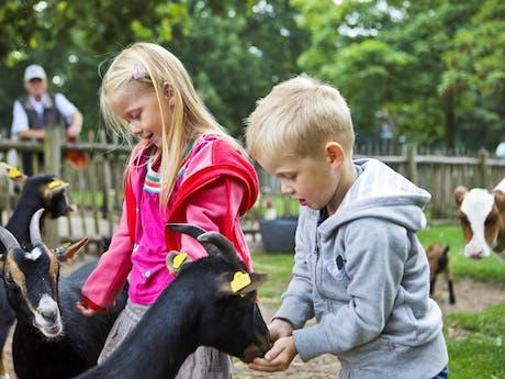 Kinderboerderij Center Parcs De Kempervennen
