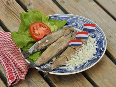 zoute haring nederland
