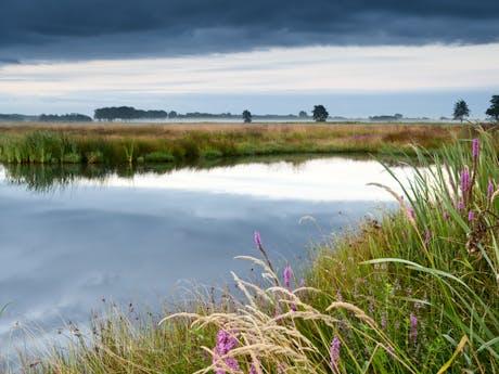 Landschap in Drenthe