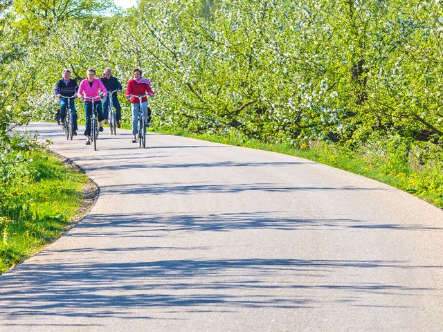 fietsen groepje