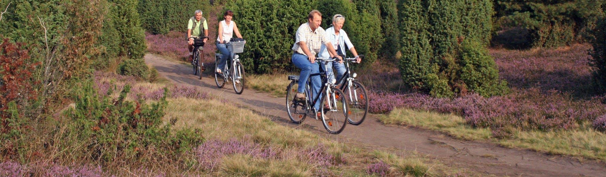 5-daagse fietsvakantie Luneburger Heide