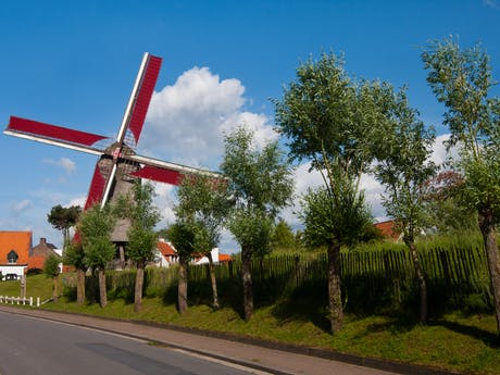6-daagse fiestvakantie Vlaanderen