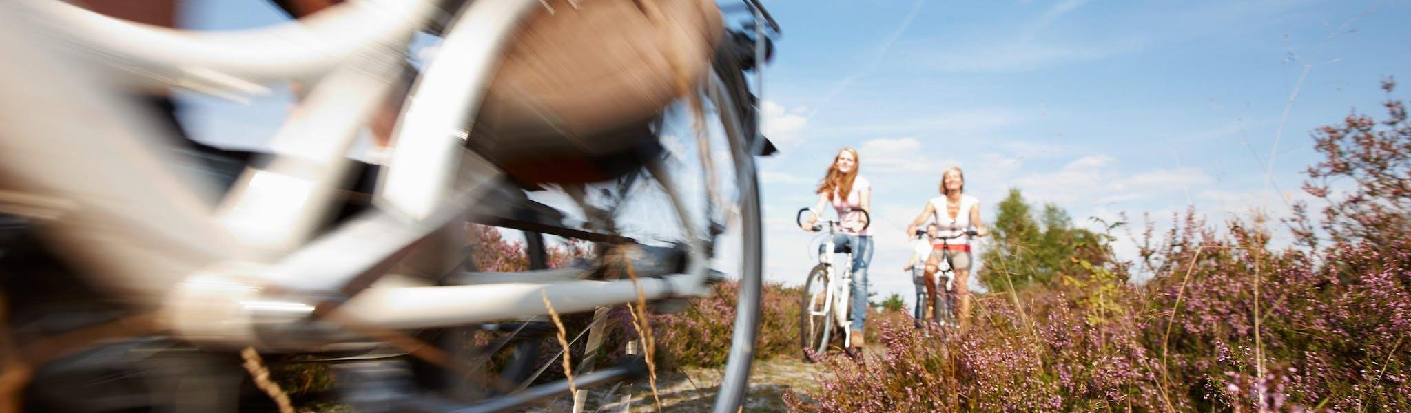 6-daagse fietsvakantie Lüneburger Heide