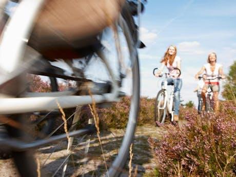 8-daagse fietsvakantie Lüneburger Heide