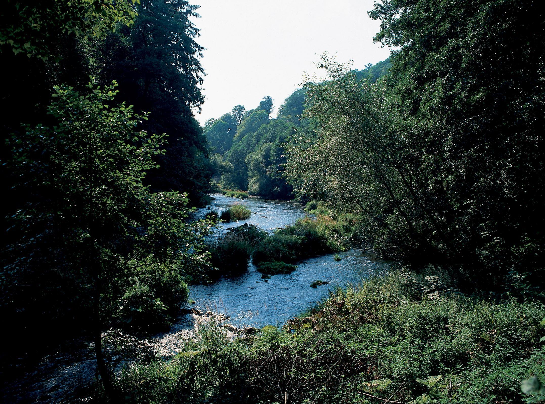 9 daagse wandelvakantie Harzer-Hexen-Stieg