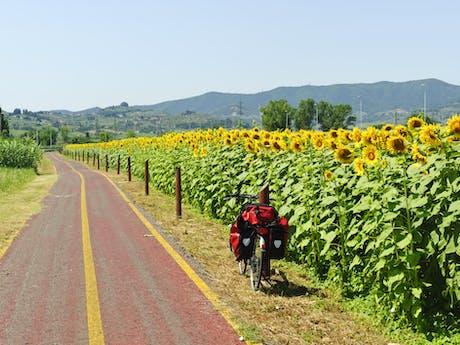 7-daagse fietsvakantie Toscaanse Kust