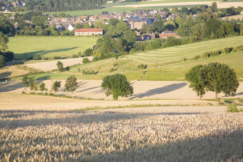 omgeving gulperberg