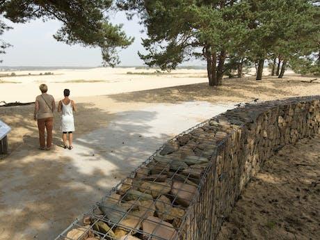 Drunense duinen bij Recreatiepark Duinhoeve