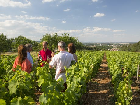 wijngaarden varen vaarvakantie