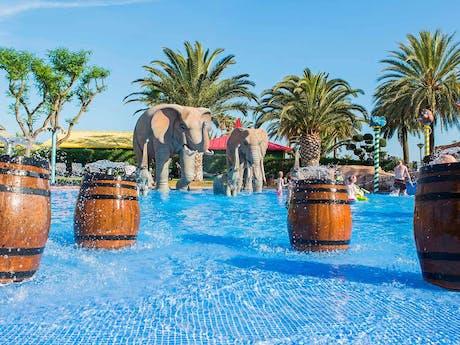 Zwembad met olifanten
