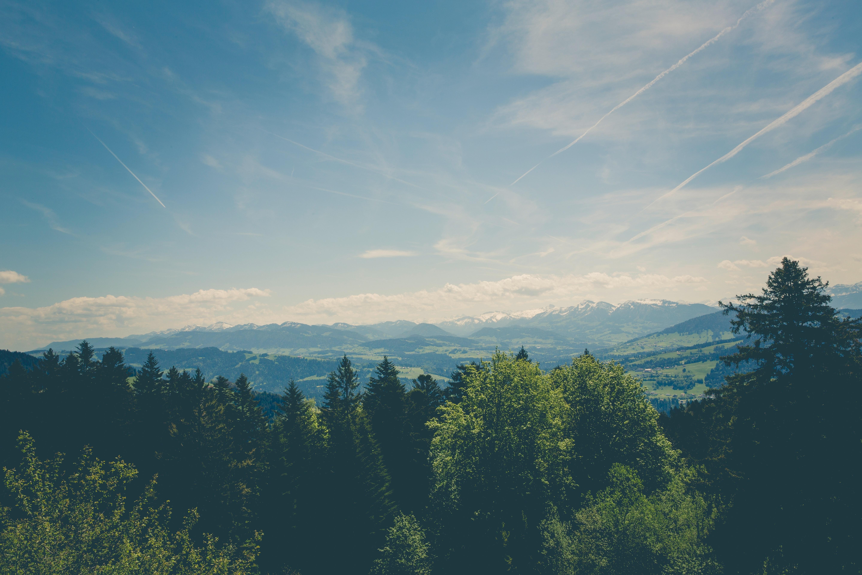 landschap natuurpark