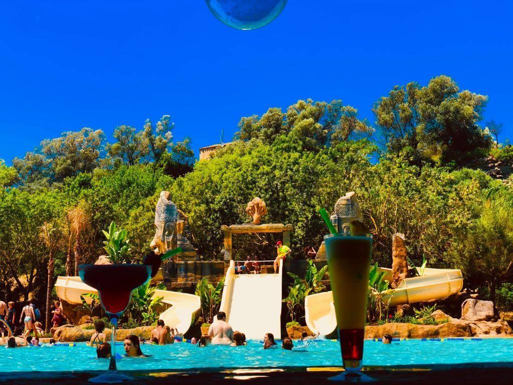 Cocktail zwembad El Delfin Verde