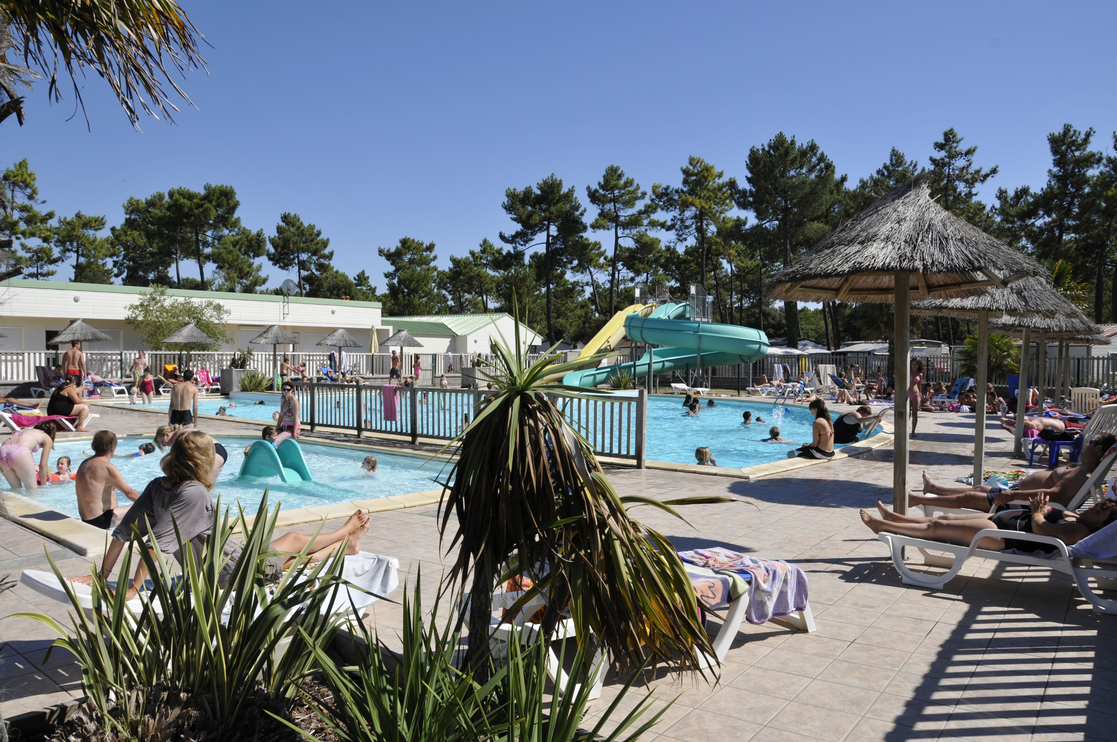 Camping California zwembad