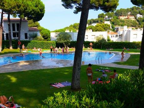 Interpals zwembad en groene ligweide