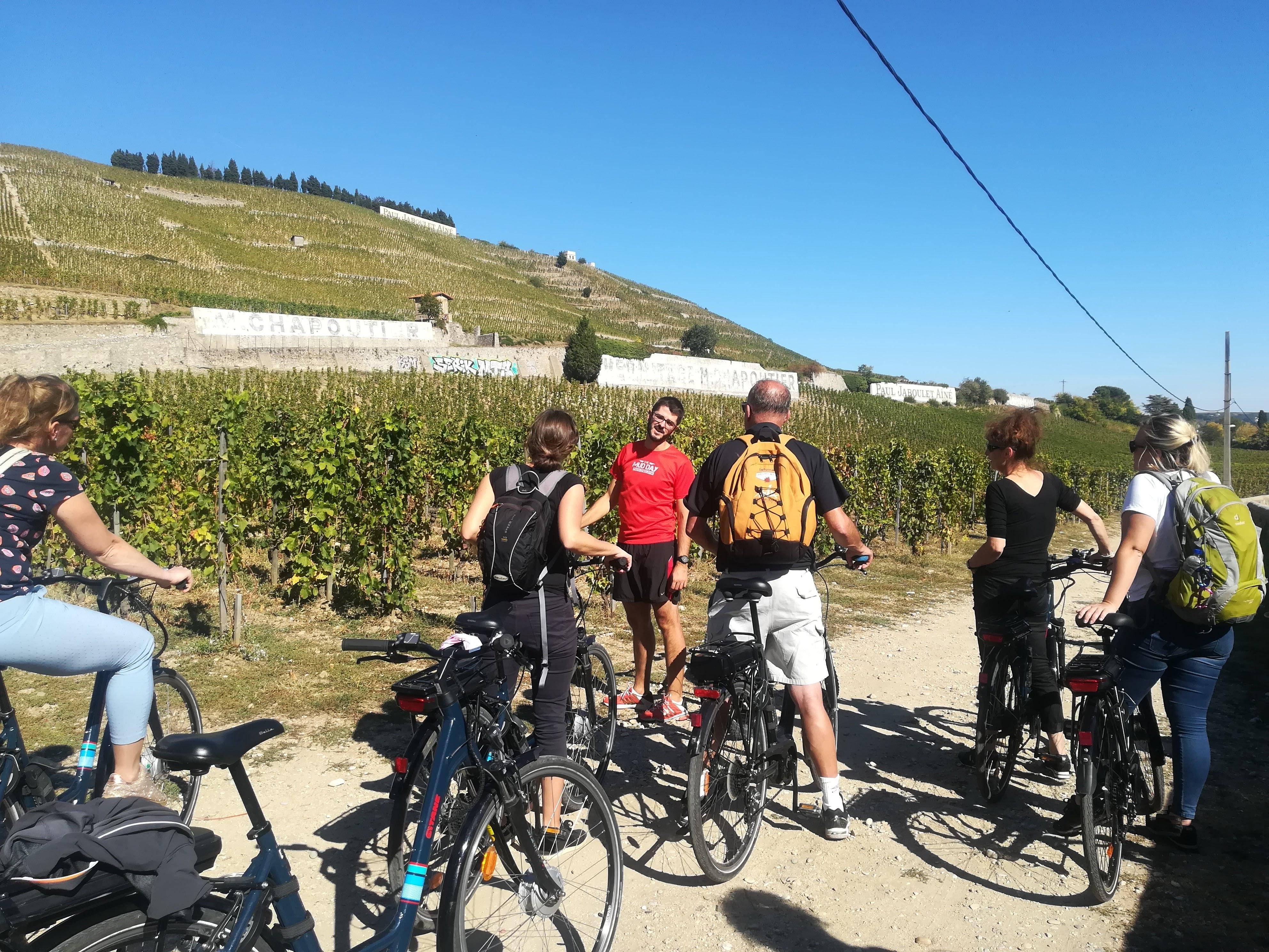Rhône wijngaard