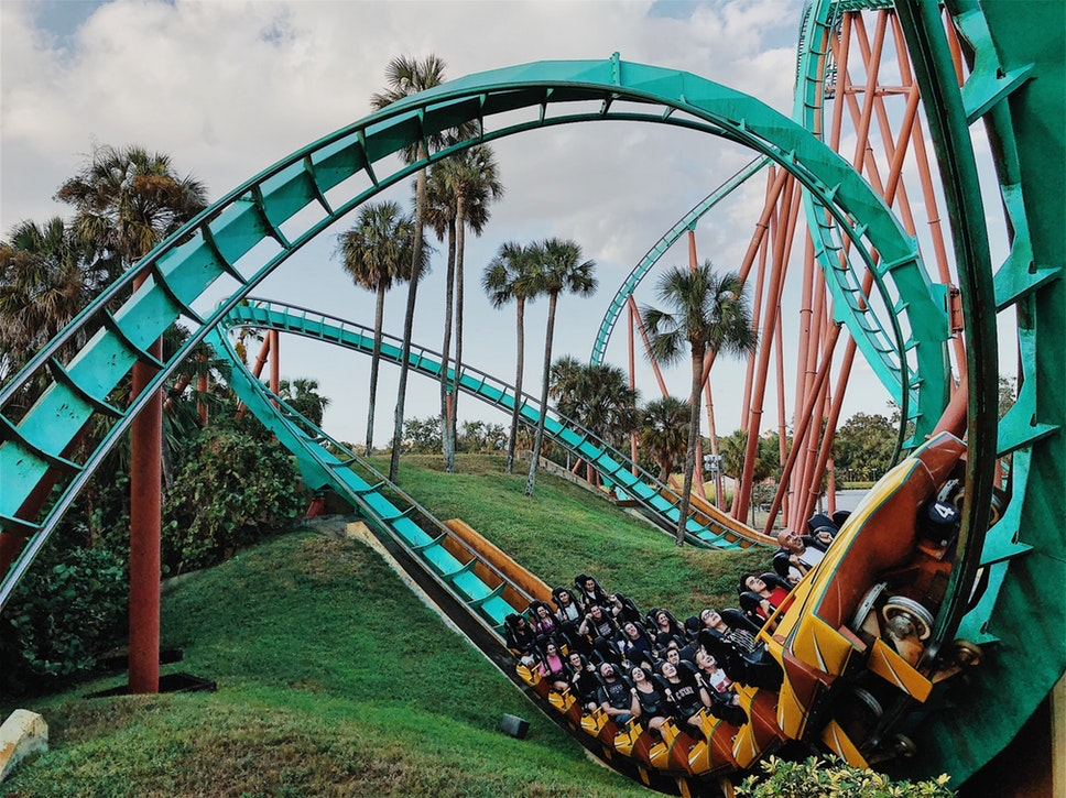roller coaster fast palm trees theme park