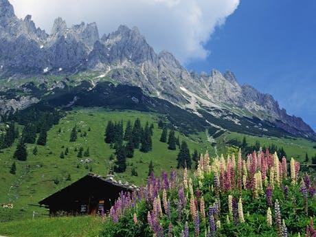 Berghut Alpe Adria