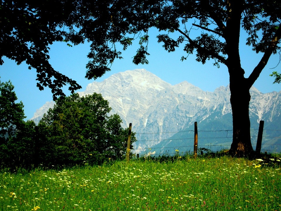 kalkalpen national park austria