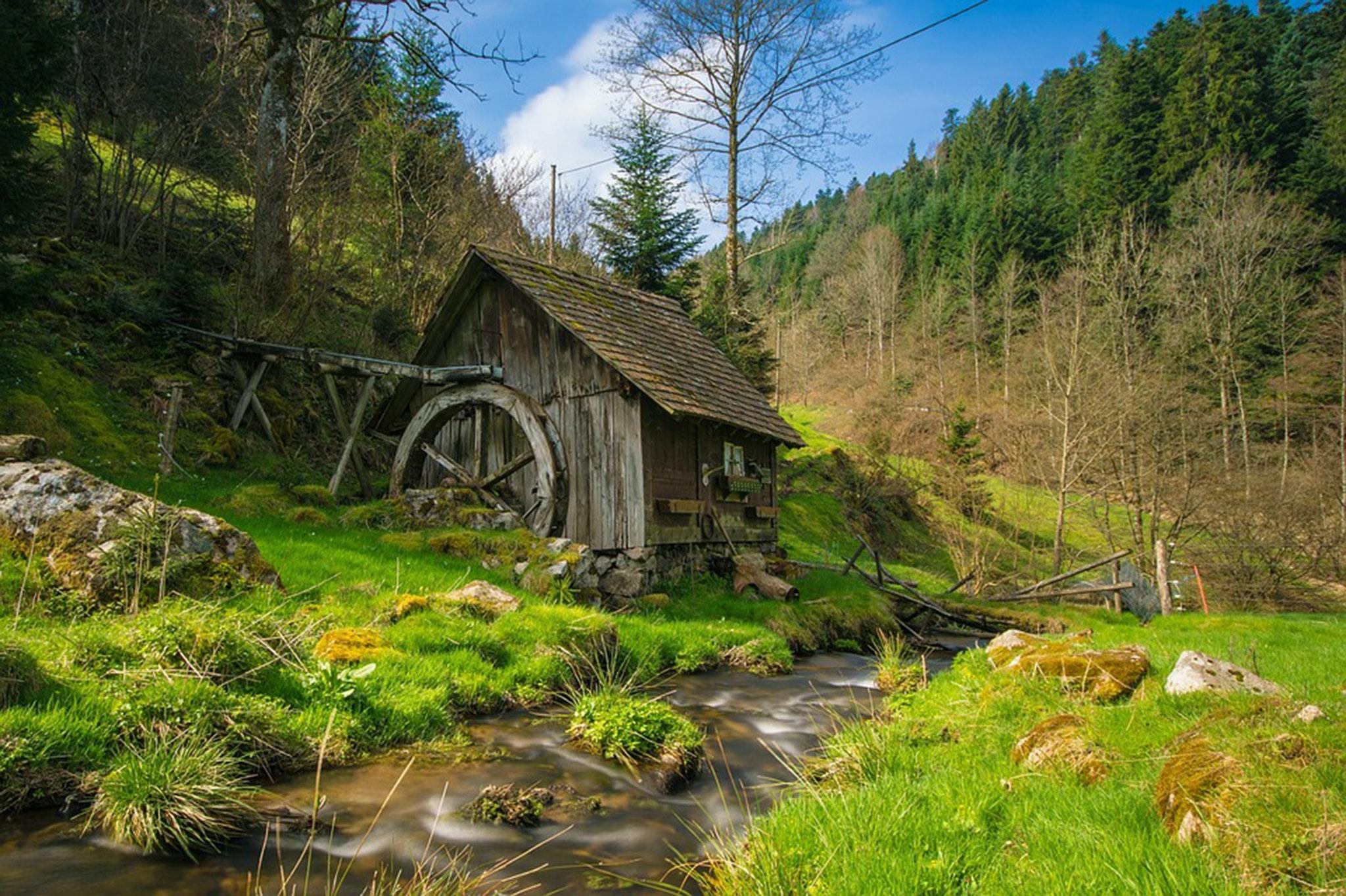 black forest national park germany