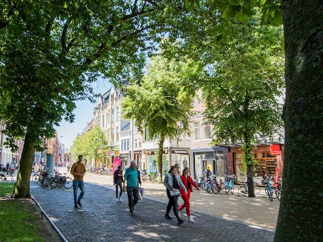 Groningen stadspark