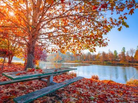 Herfst_meer