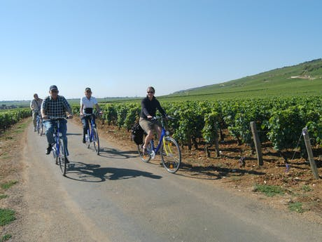 Fietsers Zuid-Bourgogne