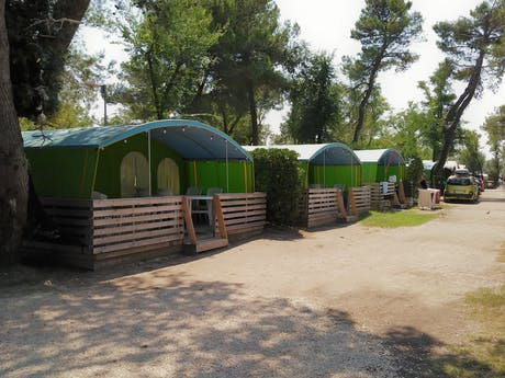 Lodgetenten Forest Camping Capalonga