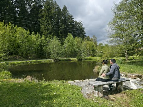 Camping Viechtach meer