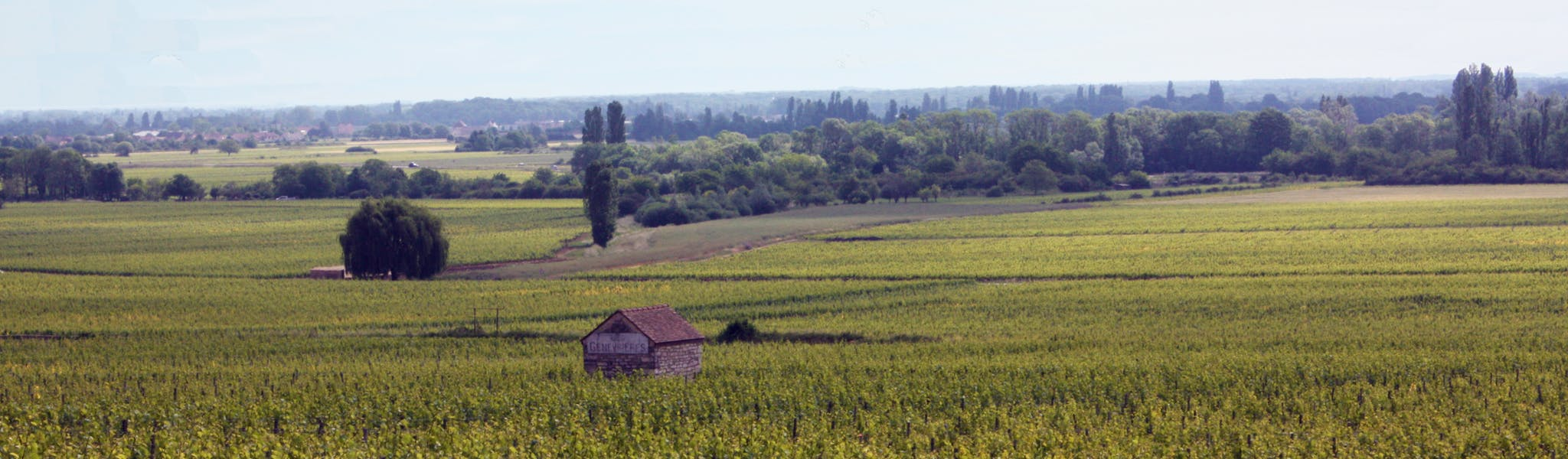 zuid-bourgogne