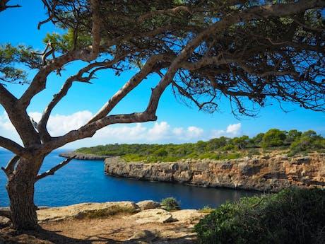 Spanje - Mallorca - Sant Jordi baai