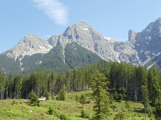 Pinzgau