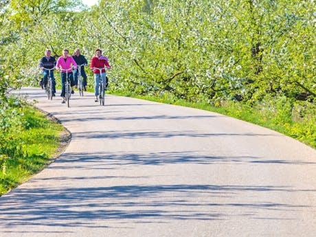 fietsen in Belgie