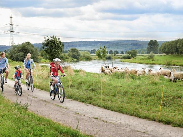 Weserradweg familie fiets