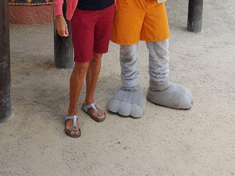 safaripark Beekse Bergen beheerder Ria Selder