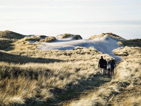 West-Jutland-Hvide-Sande-Family-Walking-Dunes