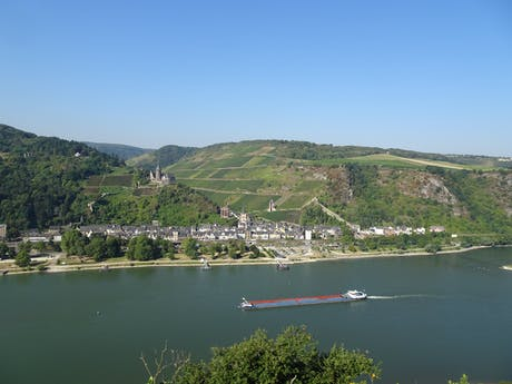 Rheinsteig Blik op de Rijn bij Bacharach